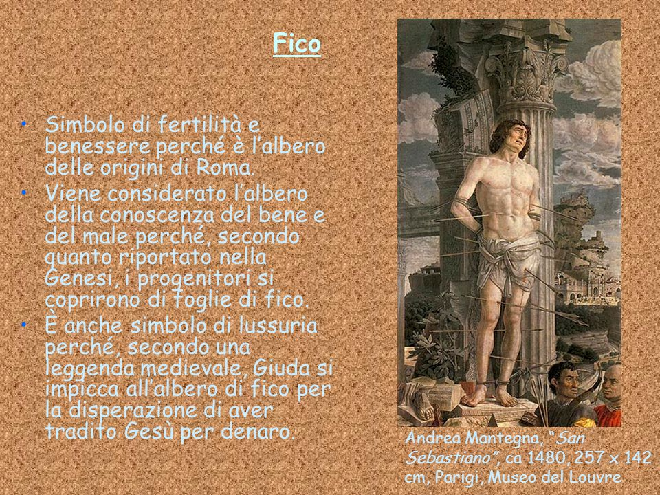 Fico Simbolo di fertilità e benessere perché è l'albero delle origini di Roma.