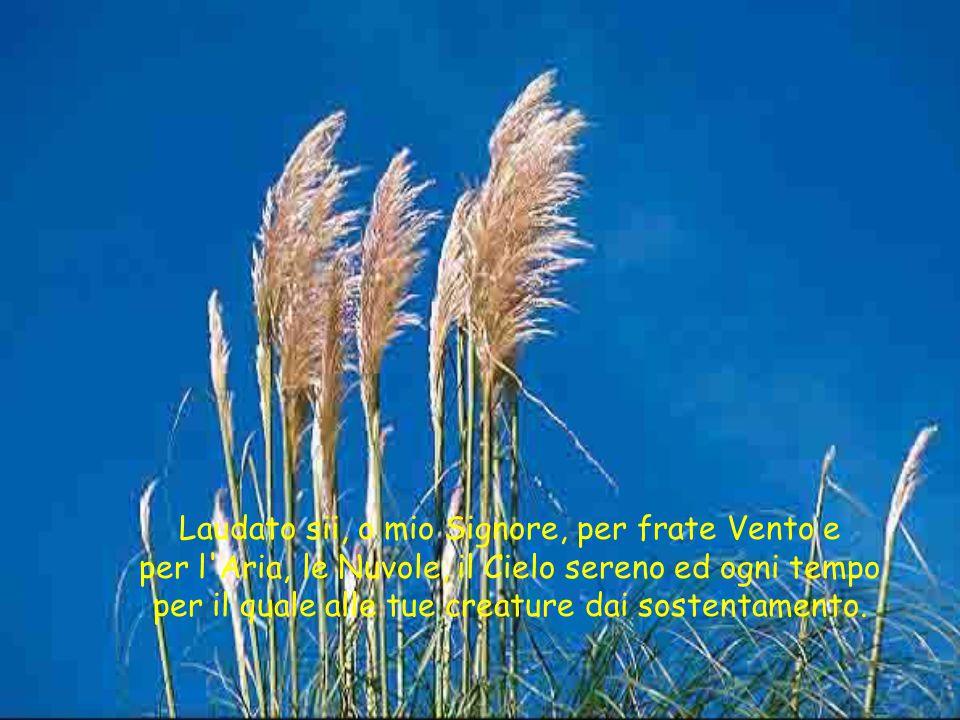 Laudato sii, o mio Signore, per frate Vento e per l Aria, le Nuvole, il Cielo sereno ed ogni tempo per il quale alle tue creature dai sostentamento.