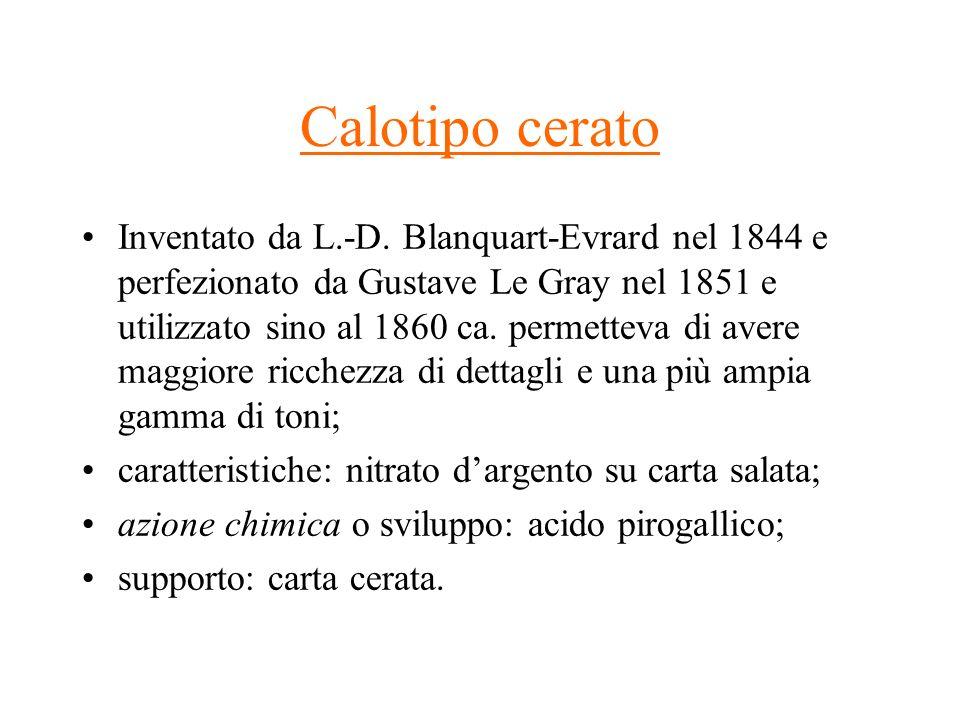 Calotipo cerato