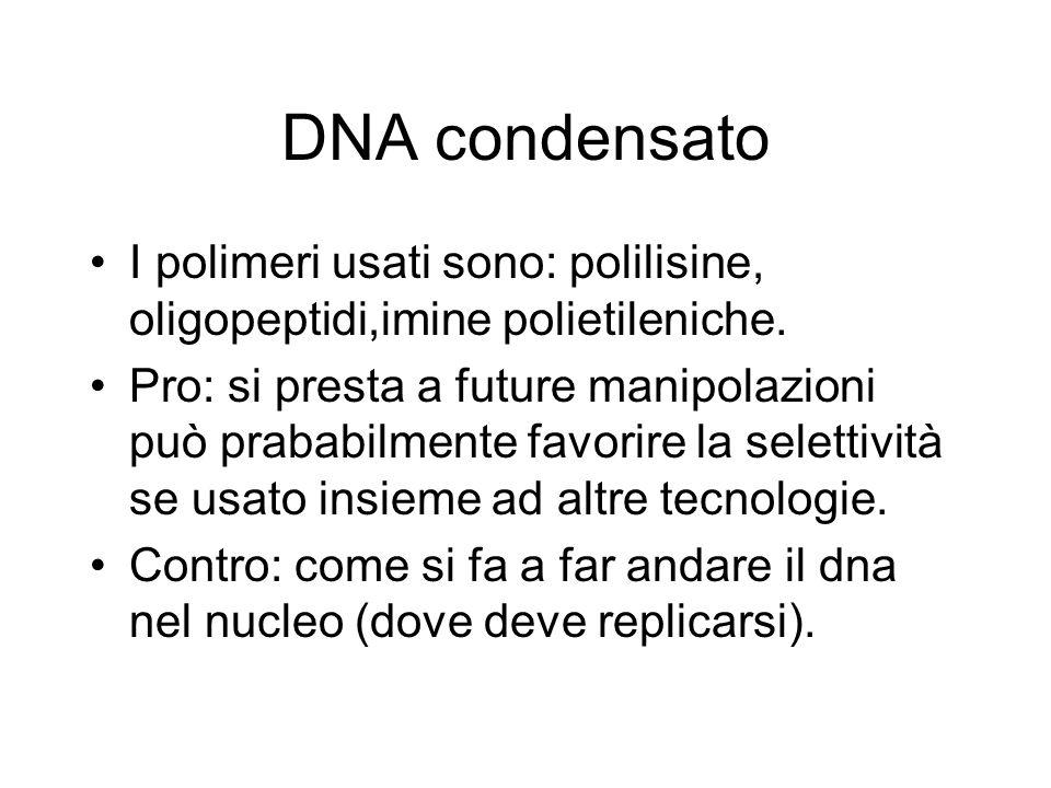 DNA condensato I polimeri usati sono: polilisine, oligopeptidi,imine polietileniche.