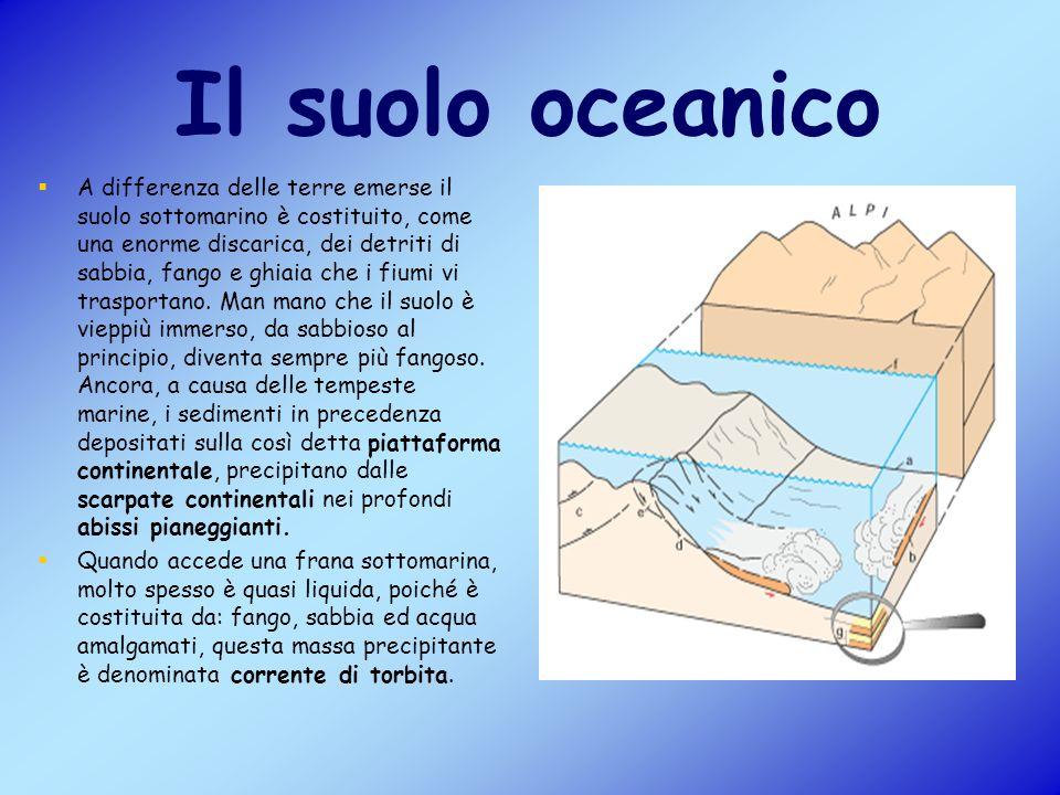Il suolo oceanico