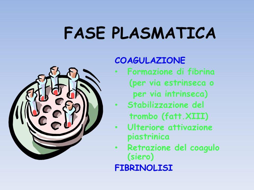 FASE PLASMATICA COAGULAZIONE Formazione di fibrina