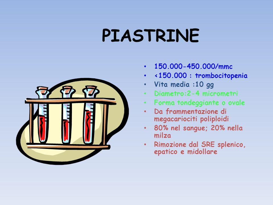 PIASTRINE 150.000-450.000/mmc <150.000 : trombocitopenia