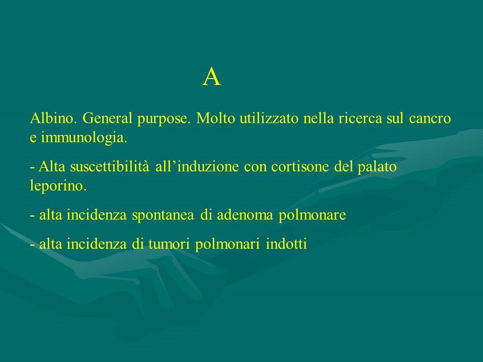 A Albino. General purpose. Molto utilizzato nella ricerca sul cancro e immunologia.