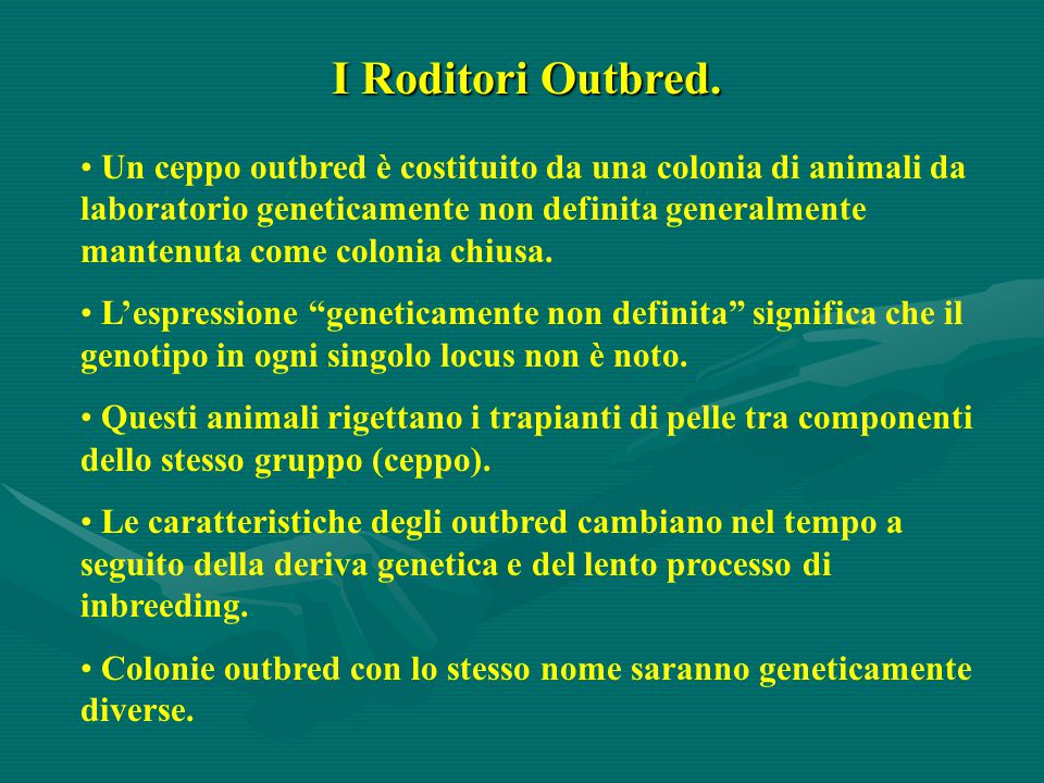 I Roditori Outbred.