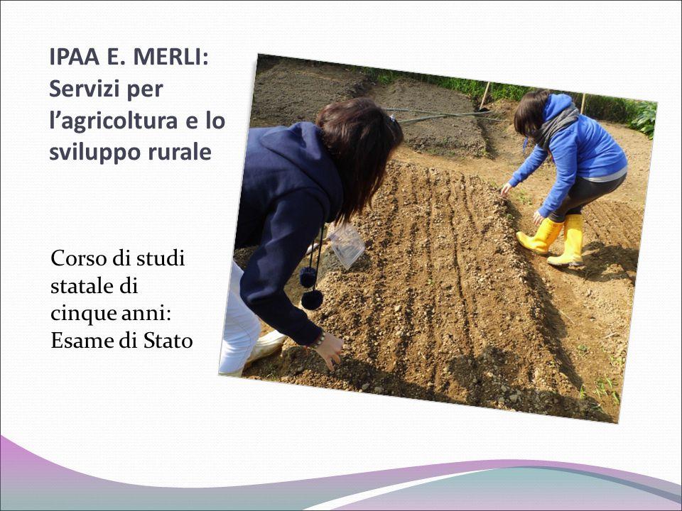 IPAA E. MERLI: Servizi per l'agricoltura e lo sviluppo rurale