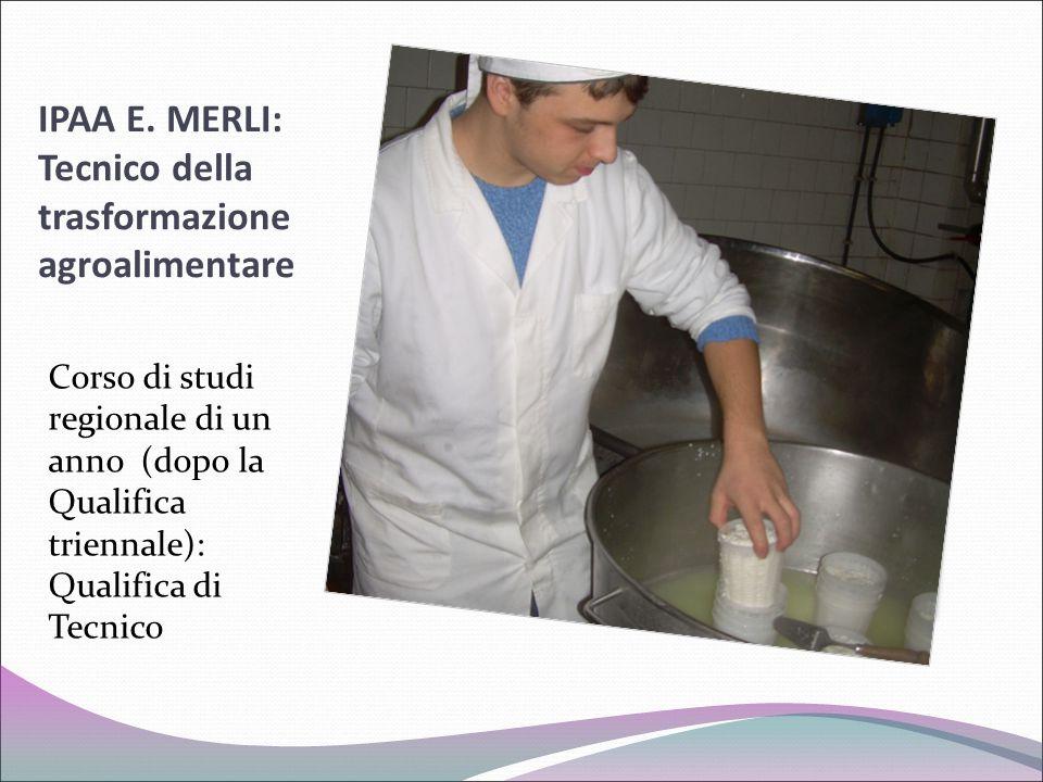 IPAA E. MERLI: Tecnico della trasformazione agroalimentare