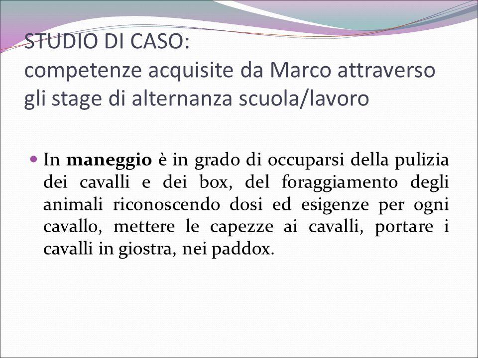 STUDIO DI CASO: competenze acquisite da Marco attraverso gli stage di alternanza scuola/lavoro