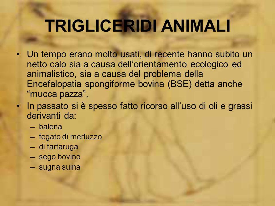 TRIGLICERIDI ANIMALI