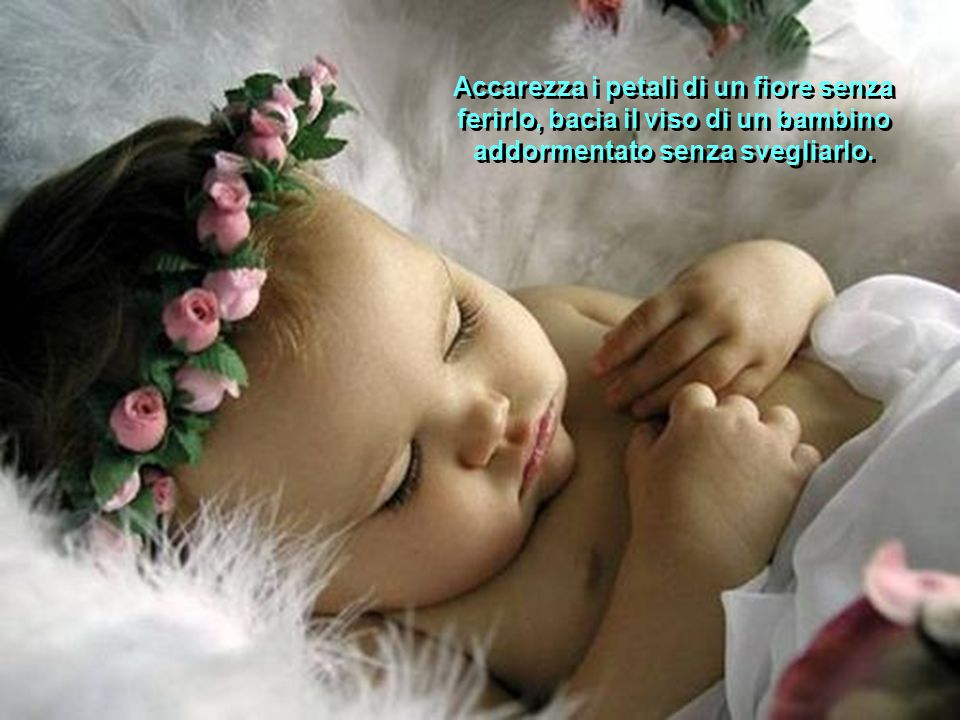 Accarezza i petali di un fiore senza ferirlo, bacia il viso di un bambino addormentato senza svegliarlo.
