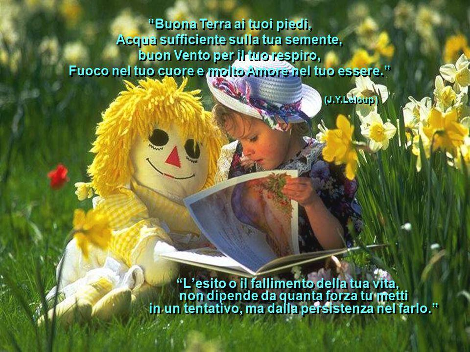 Buona Terra ai tuoi piedi, Acqua sufficiente sulla tua semente, buon Vento per il tuo respiro, Fuoco nel tuo cuore e molto Amore nel tuo essere.