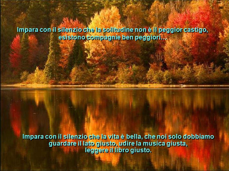Impara con il silenzio che la solitudine non è il peggior castigo, esistono compagnie ben peggiori…