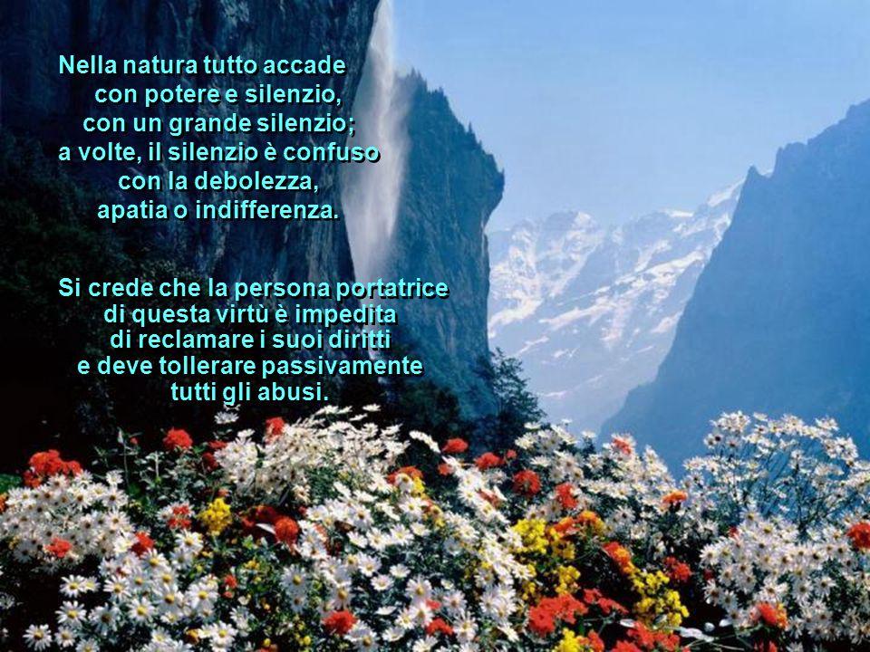 Nella natura tutto accade con potere e silenzio, con un grande silenzio; a volte, il silenzio è confuso con la debolezza, apatia o indifferenza.