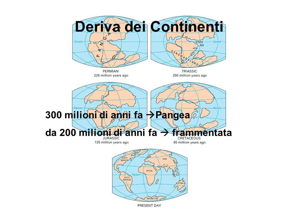 Deriva dei Continenti 300 milioni di anni fa Pangea