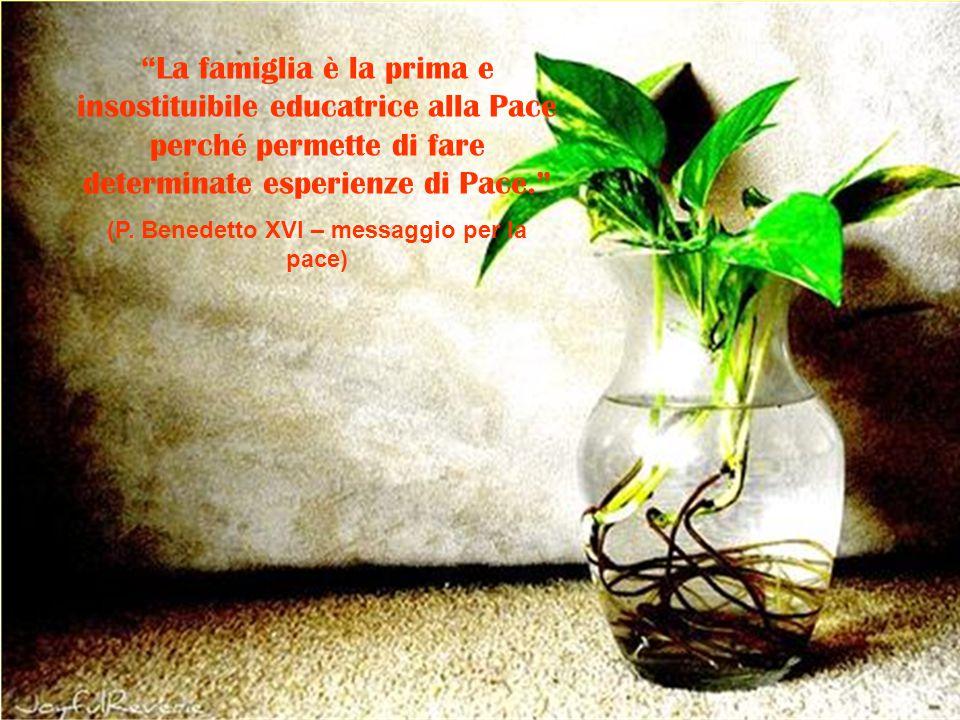 (P. Benedetto XVI – messaggio per la pace)