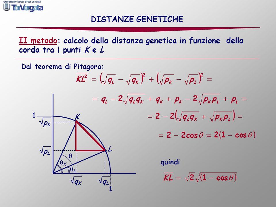 DISTANZE GENETICHE II metodo: calcolo della distanza genetica in funzione della corda tra i punti K e L.