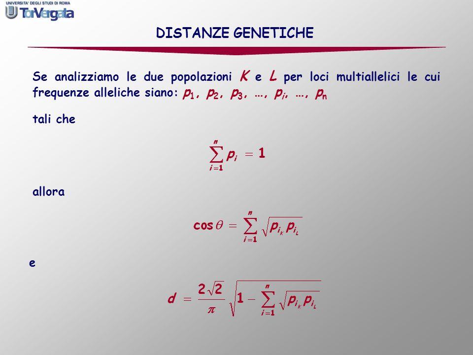DISTANZE GENETICHE Se analizziamo le due popolazioni K e L per loci multiallelici le cui frequenze alleliche siano: p1, p2, p3, …, pi, …, pn.