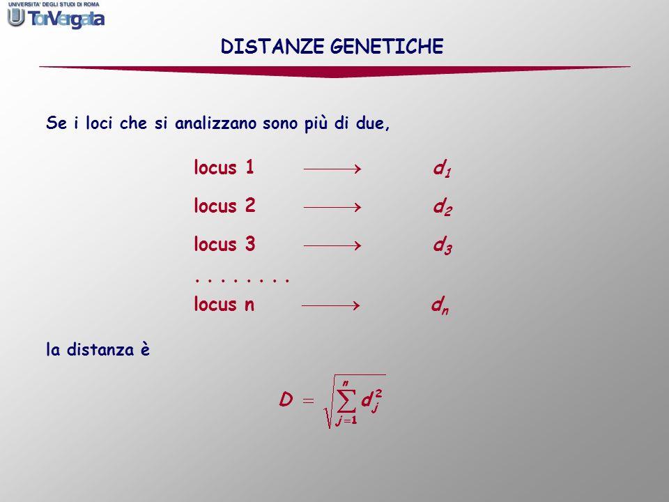 DISTANZE GENETICHE locus 1  d1 locus 2  d2 locus 3  d3