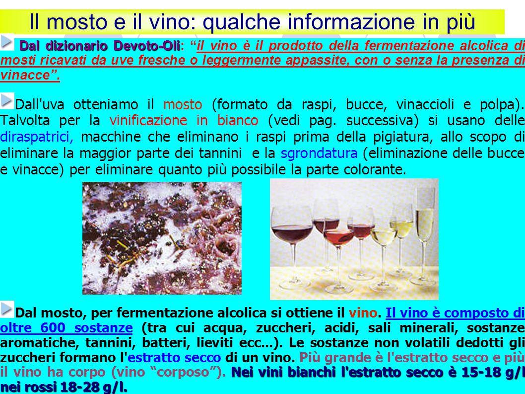 Il mosto e il vino: qualche informazione in più