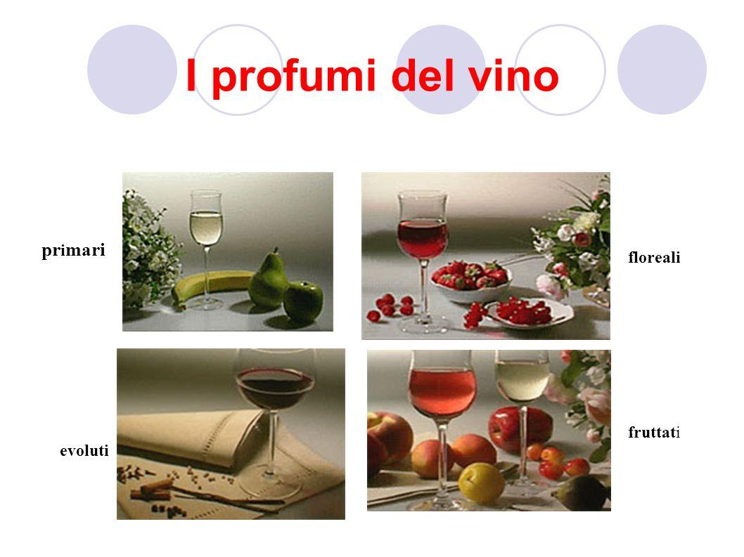 I profumi del vino primari floreali fruttati evoluti