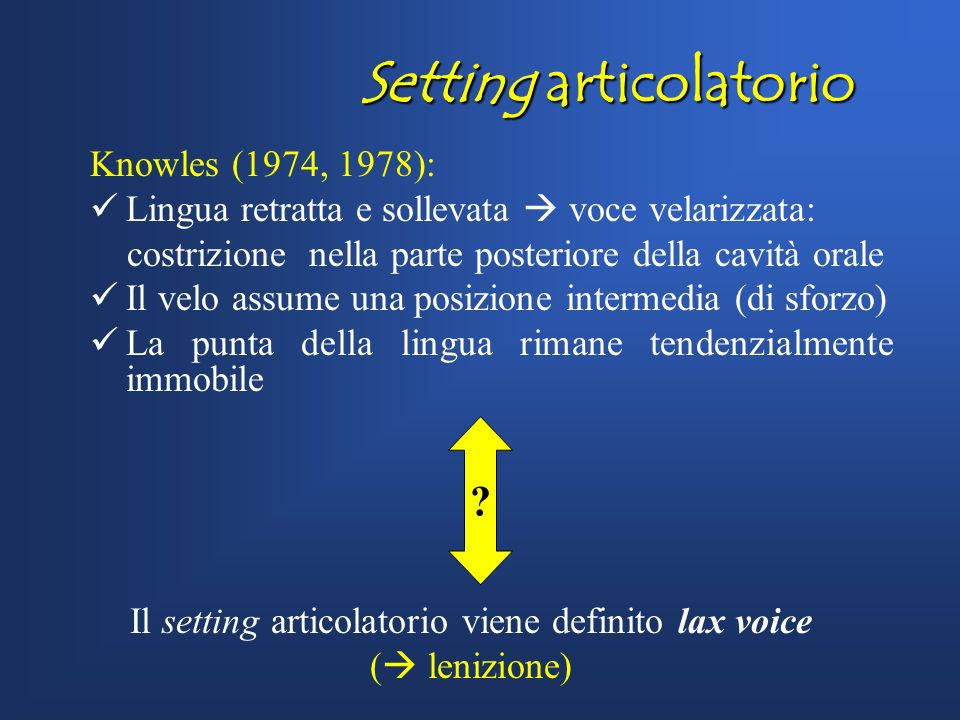 Setting articolatorio