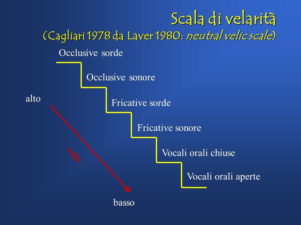 Scala di velarità (Cagliari 1978 da Laver 1980: neutral velic scale)