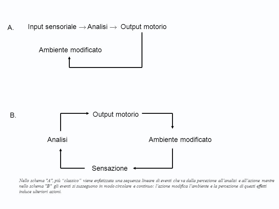 Analisi Ambiente modificato