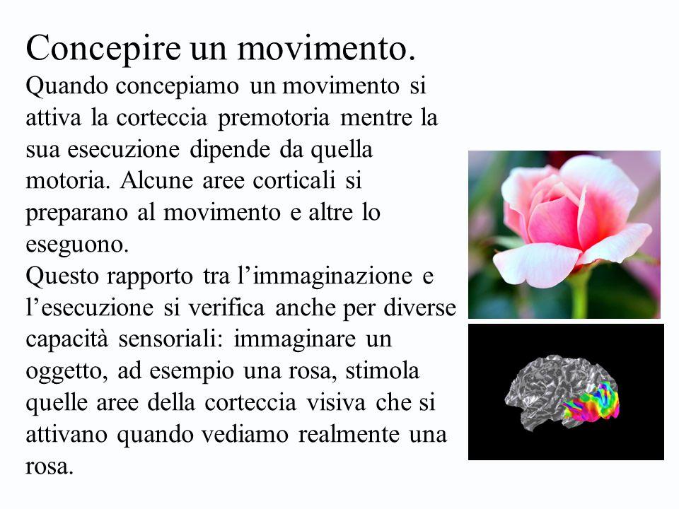 Concepire un movimento.