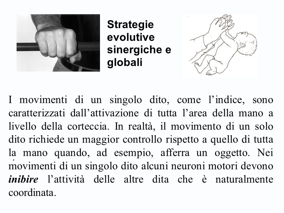 Strategie evolutive sinergiche e globali