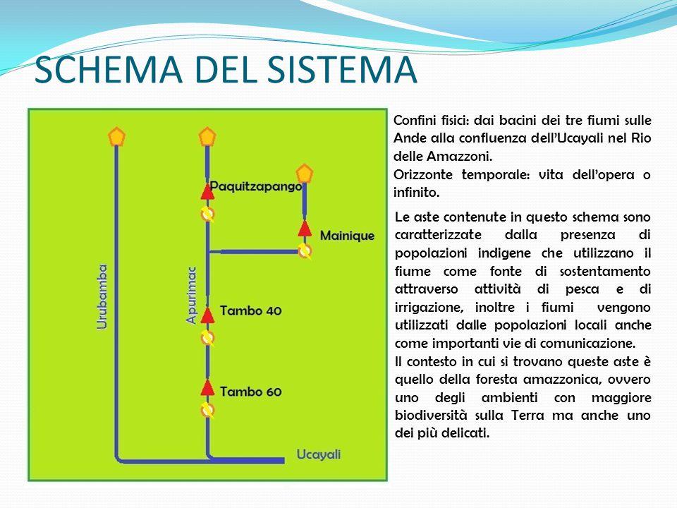 SCHEMA DEL SISTEMA Confini fisici: dai bacini dei tre fiumi sulle Ande alla confluenza dell'Ucayali nel Rio delle Amazzoni.