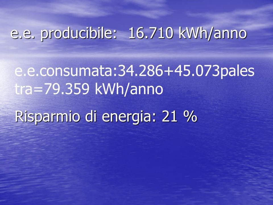 e.e. producibile: 16.710 kWh/anno