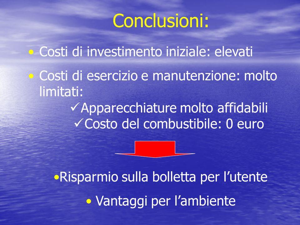 Conclusioni: Costi di investimento iniziale: elevati