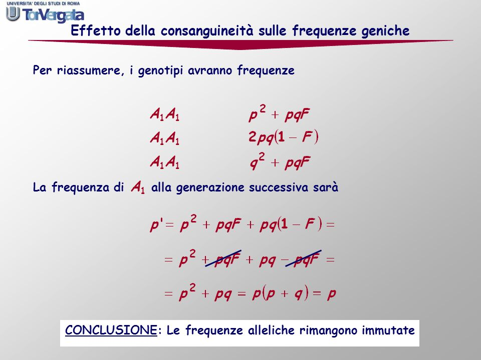 Effetto della consanguineità sulle frequenze geniche