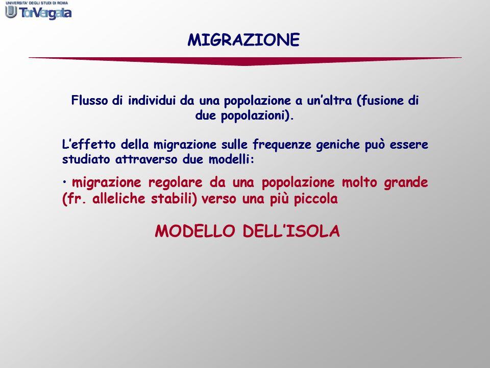 MIGRAZIONE Flusso di individui da una popolazione a un'altra (fusione di due popolazioni).