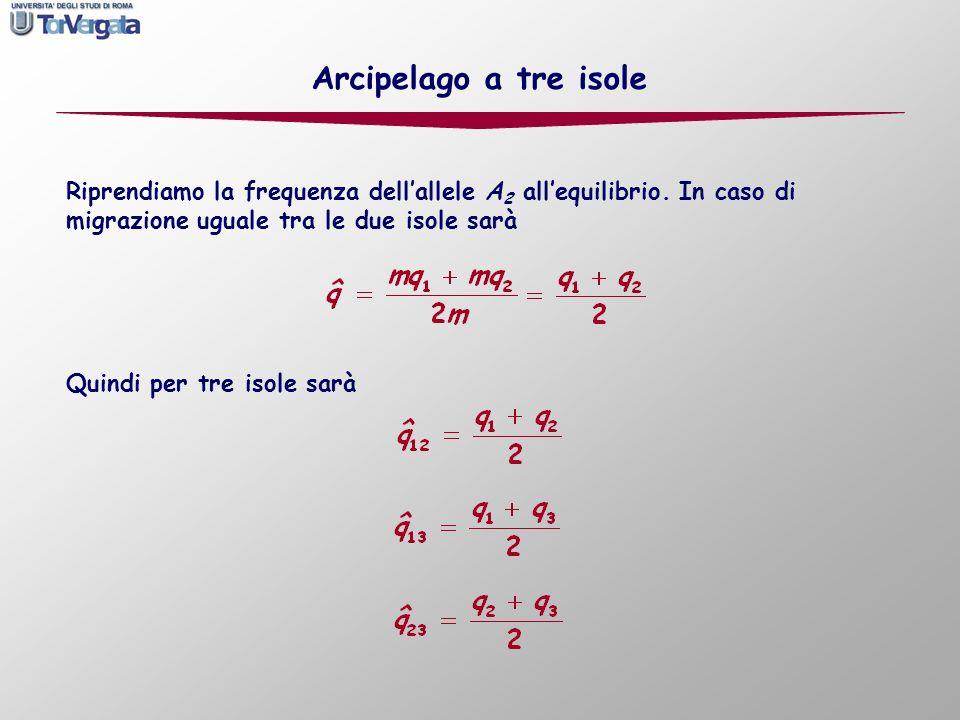 Arcipelago a tre isole Riprendiamo la frequenza dell'allele A2 all'equilibrio. In caso di migrazione uguale tra le due isole sarà.
