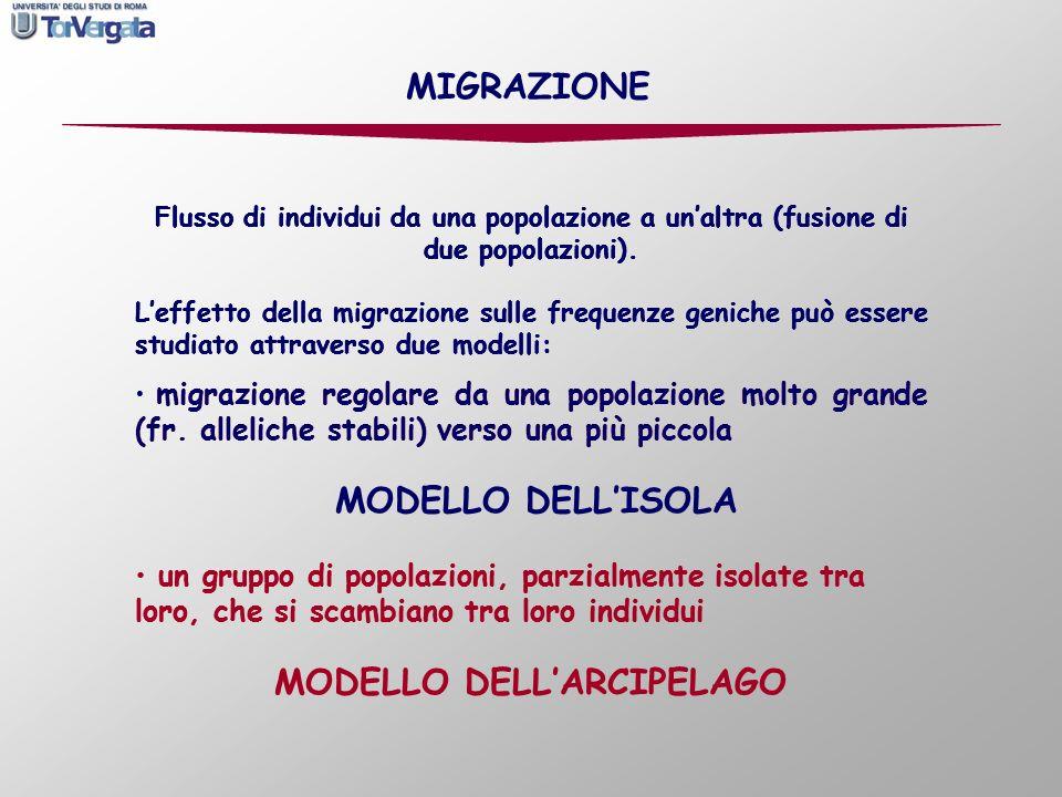 MODELLO DELL'ARCIPELAGO