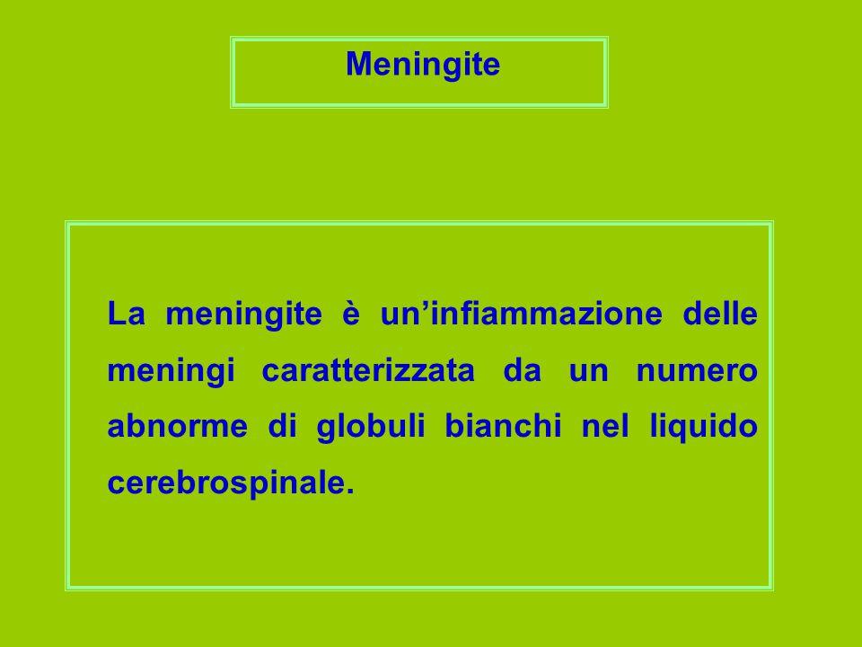 Meningite La meningite è un'infiammazione delle meningi caratterizzata da un numero abnorme di globuli bianchi nel liquido cerebrospinale.