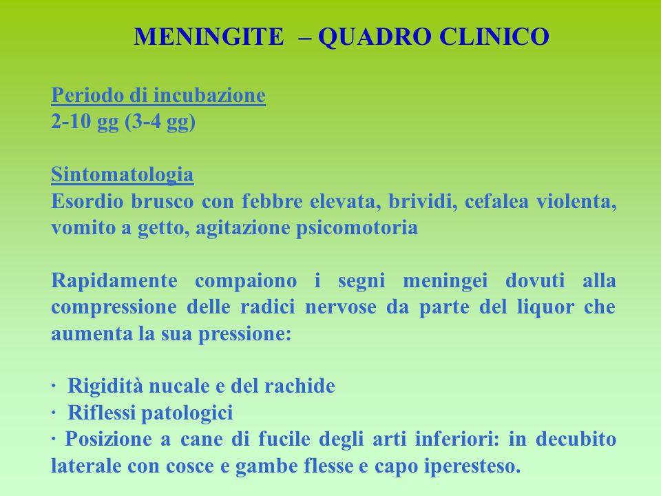 MENINGITE – QUADRO CLINICO