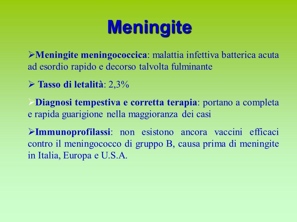 Meningite Meningite meningococcica: malattia infettiva batterica acuta ad esordio rapido e decorso talvolta fulminante.