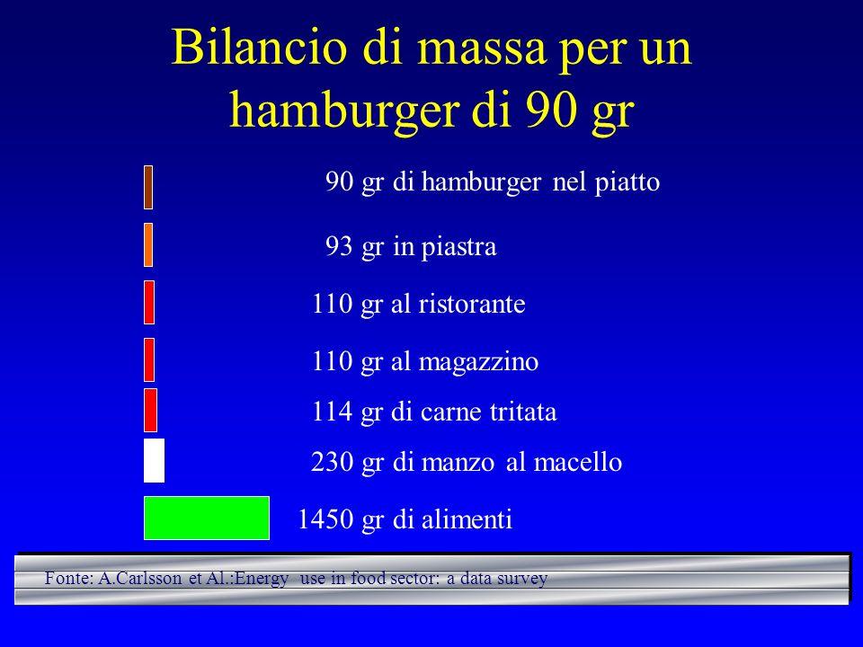 Bilancio di massa per un hamburger di 90 gr