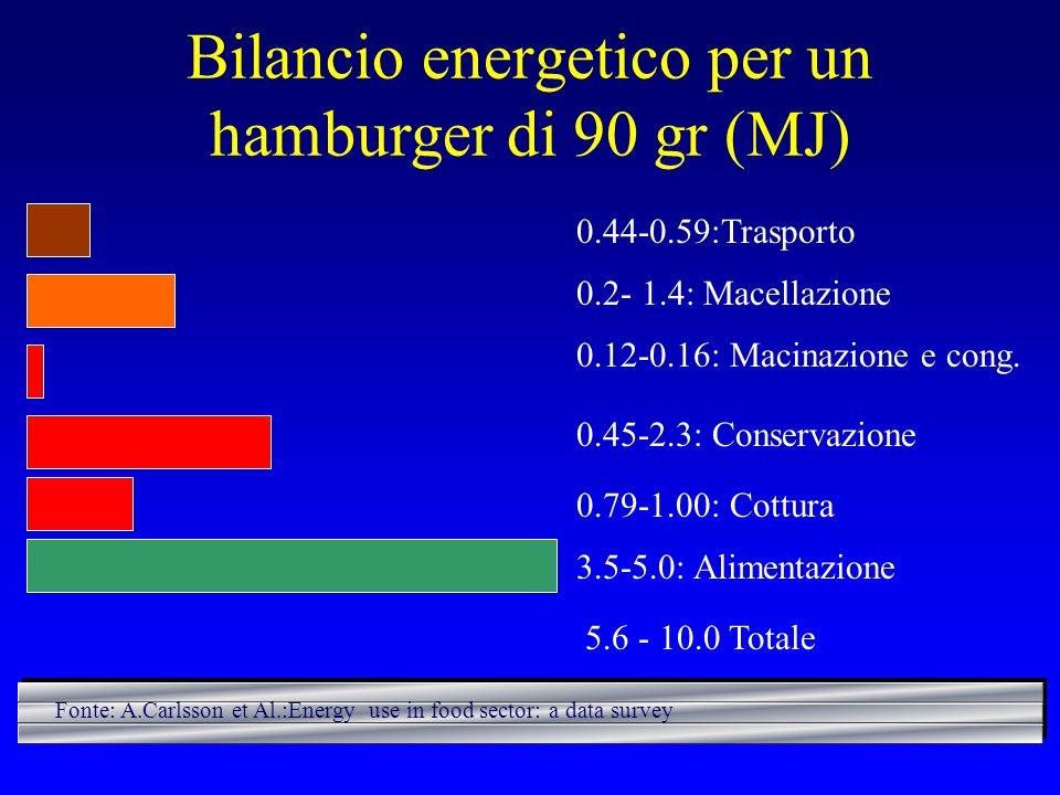Bilancio energetico per un hamburger di 90 gr (MJ)