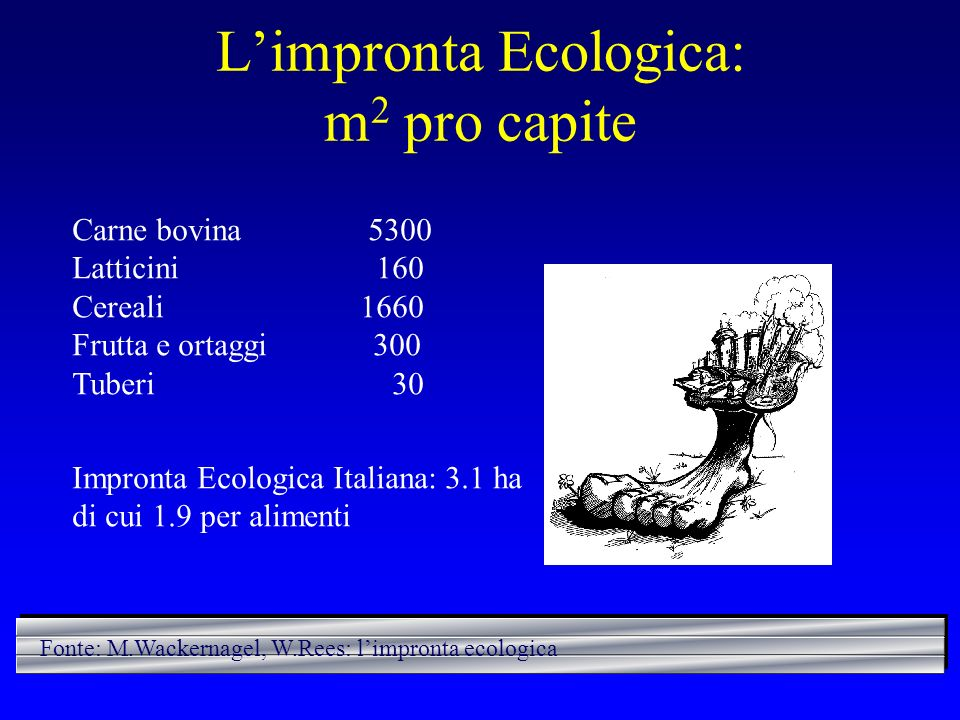 L'impronta Ecologica: m2 pro capite