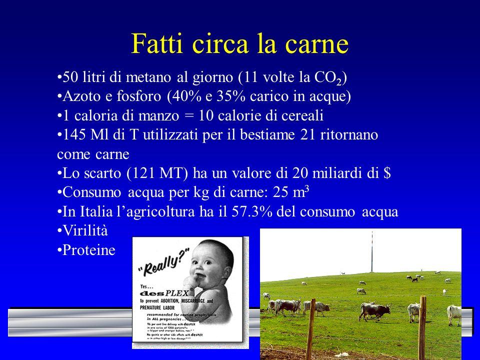 Fatti circa la carne 50 litri di metano al giorno (11 volte la CO2)