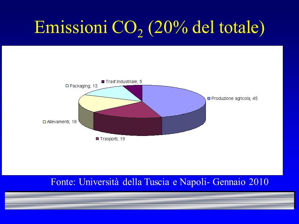 Emissioni CO2 (20% del totale)