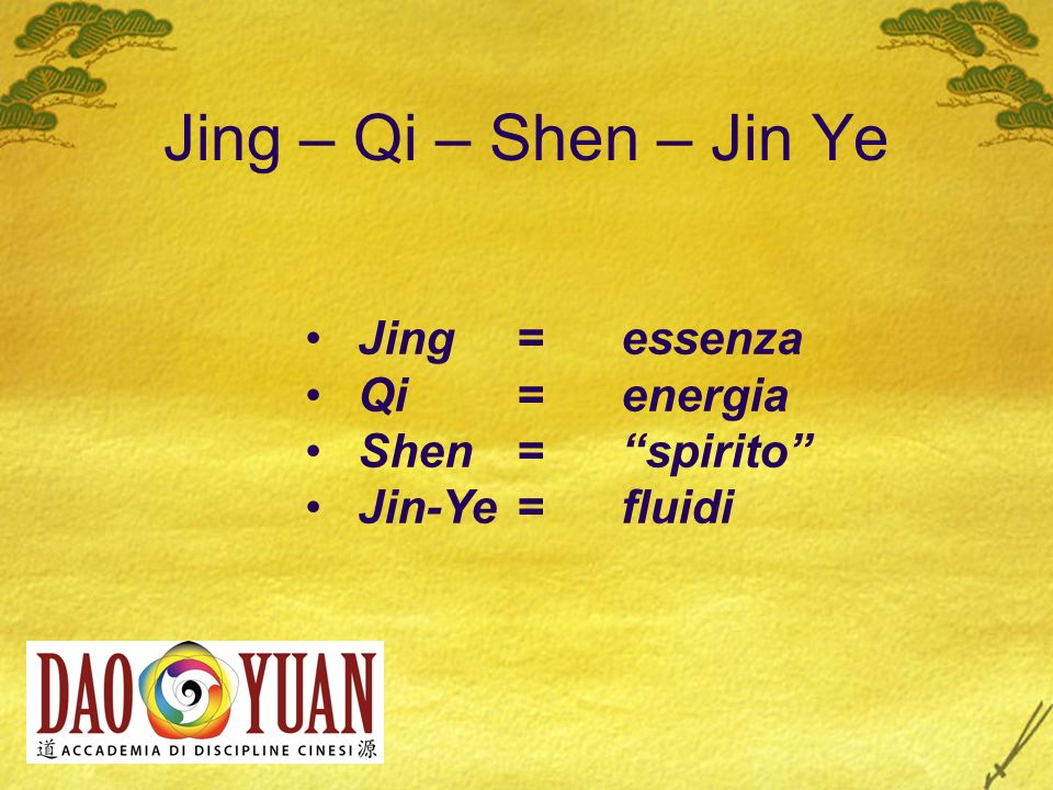 Jing – Qi – Shen – Jin Ye Jing = essenza Qi = energia Shen = spirito