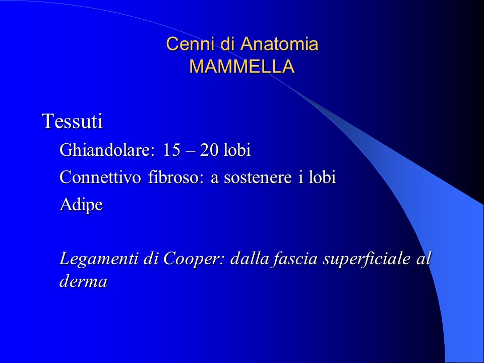 Cenni di Anatomia MAMMELLA