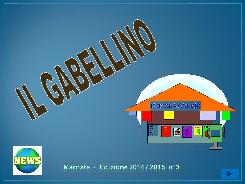IL GABELLINO Marnate - Edizione 2014 / 2015 n°3