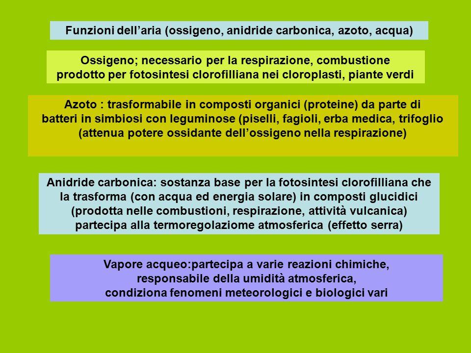 Funzioni dell'aria (ossigeno, anidride carbonica, azoto, acqua)
