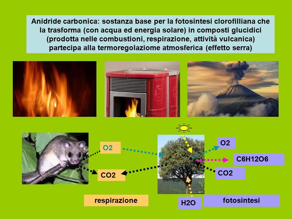 Anidride carbonica: sostanza base per la fotosintesi clorofilliana che la trasforma (con acqua ed energia solare) in composti glucidici (prodotta nelle combustioni, respirazione, attività vulcanica) partecipa alla termoregolaziome atmosferica (effetto serra)