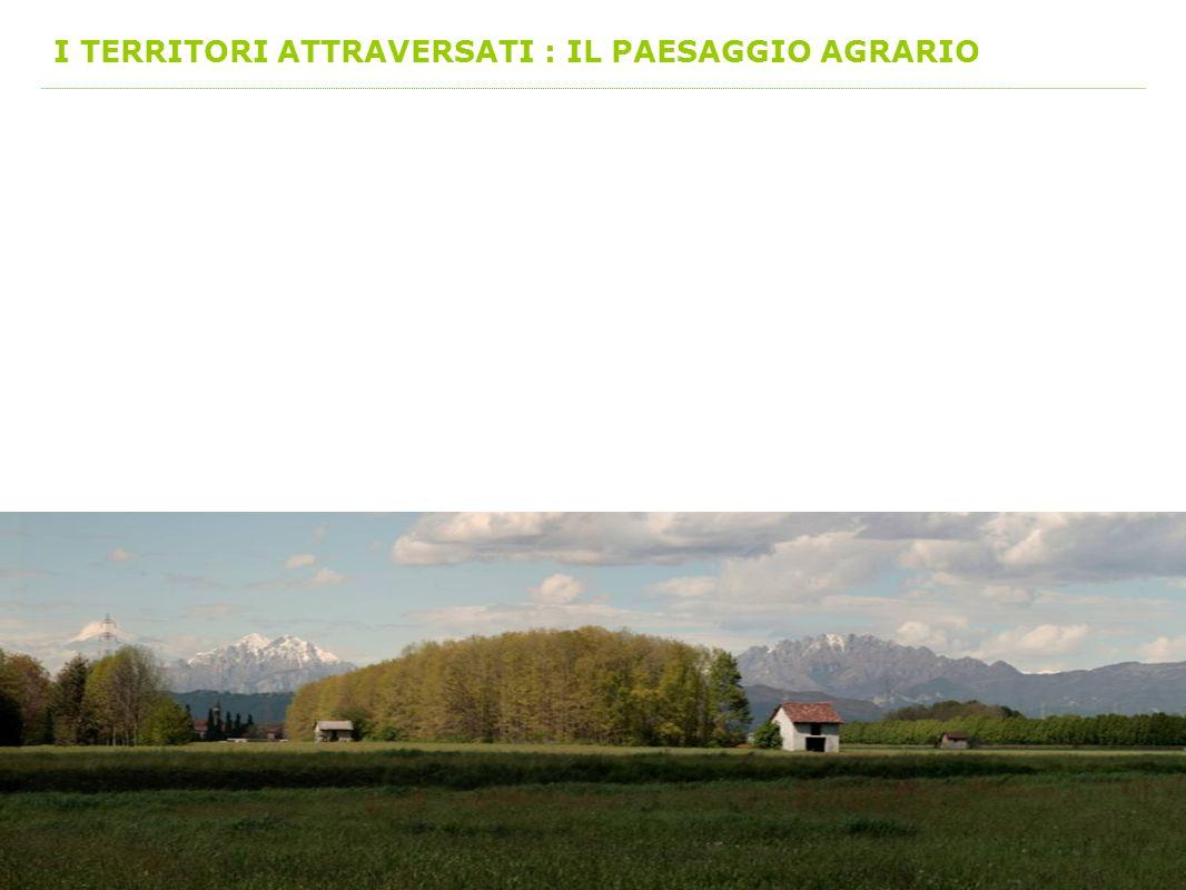 I TERRITORI ATTRAVERSATI : IL PAESAGGIO AGRARIO